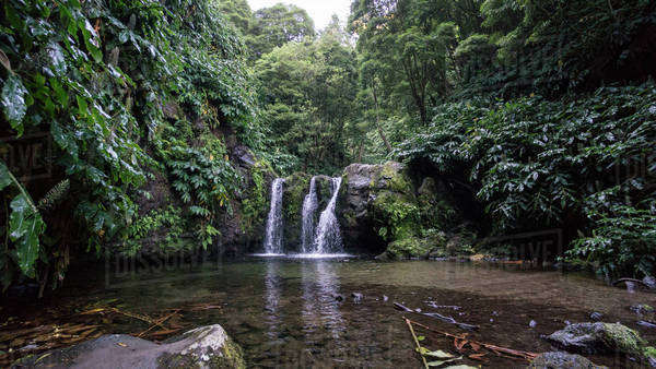 Small waterfall in the jungle in the Sao Miguel Island in Azores, Portugal Royalty-free stock photo