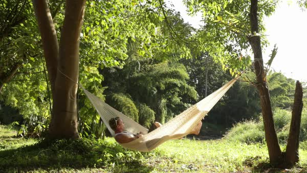 Lockdown shot of man swinging in hammock at forest Royalty-free stock video