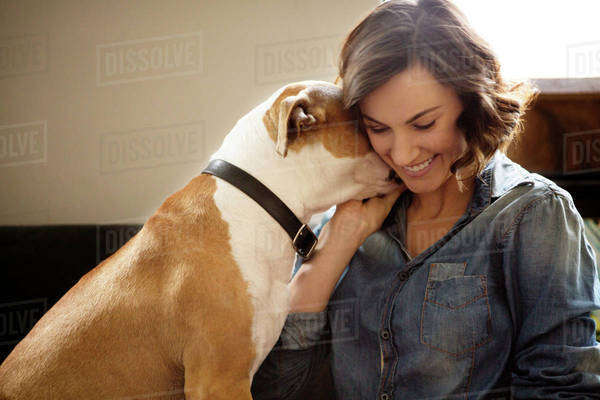 Dog showing afection to his female owner Royalty-free stock photo
