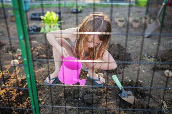 High angle view of girl watering seedling in backyard Royalty-free stock photo