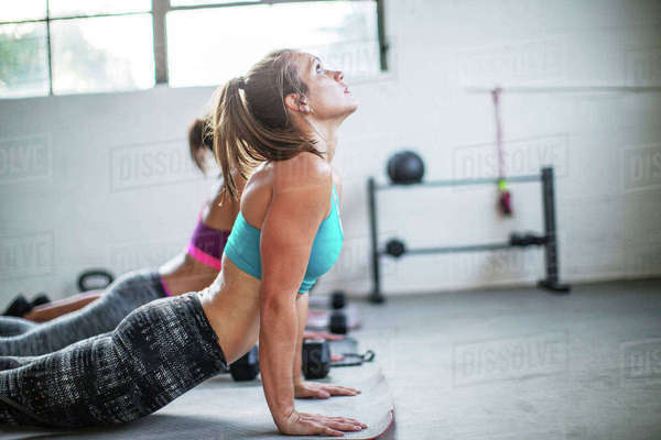 Female athletes practicing upward facing dog position in gym Royalty-free stock photo