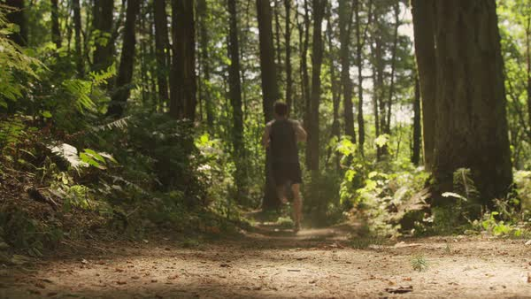 Dolly shot of young man running on trail amidst trees in forest Royalty-free stock video
