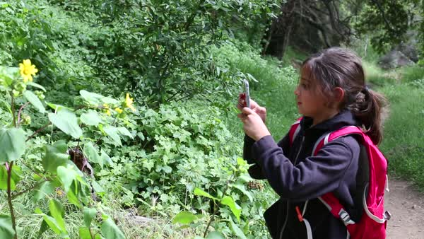 Handheld shot of girl photographing plants with a smartphone in a forest Royalty-free stock video
