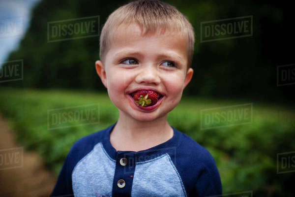 Happy boy eating strawberry while standing on field Royalty-free stock photo