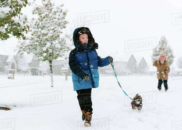 Boy with Shih Tzu walking on snow covered field while brother standing in background Royalty-free stock photo