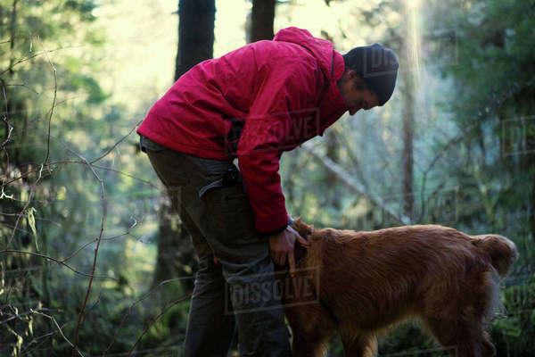 Side view of hiker playing with Golden Retriever in forest Royalty-free stock photo
