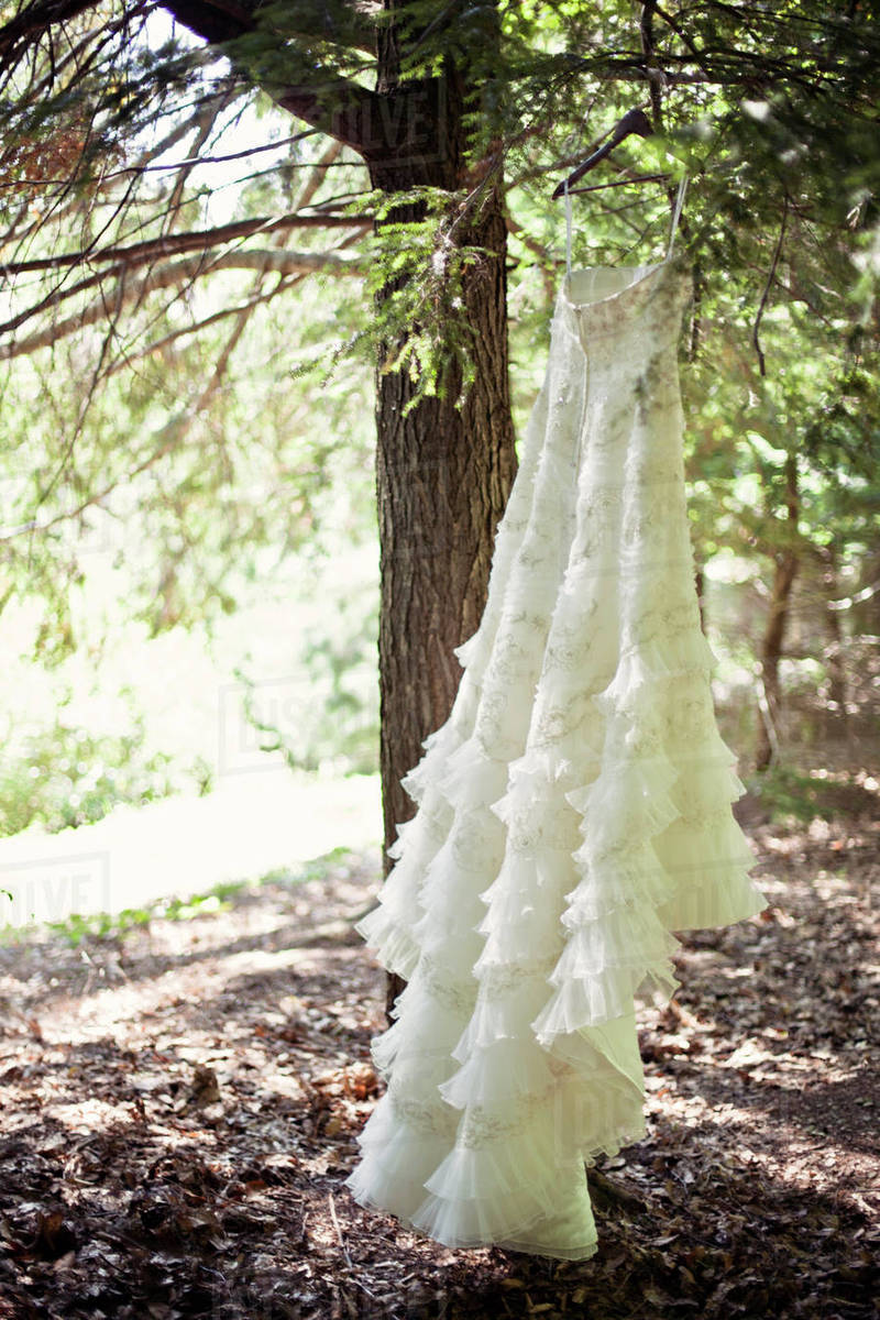 Wedding Dress Hanging On Branches Outdoors