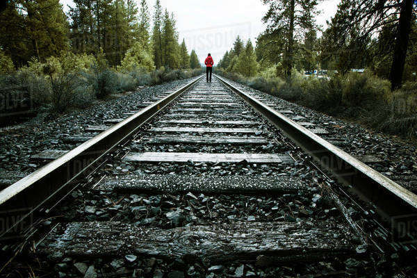 Rear view of woman walking on railroad track at forest Royalty-free stock photo