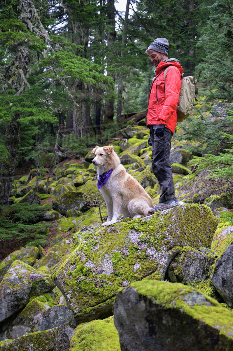 Male hiker and fluffy dog standing on mossy rocks in the mountains Royalty-free stock photo