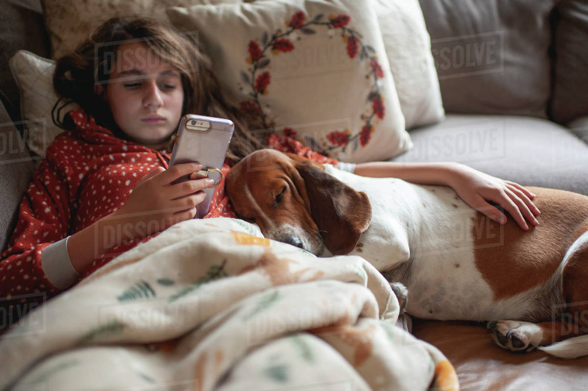 Tween girl looking at her phone while cuddling with hound dog on couch Royalty-free stock photo