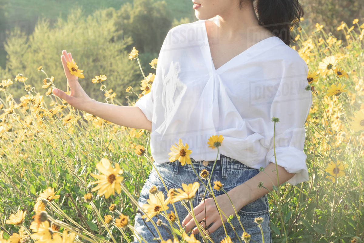 Brunette woman holding yellow daisy in flower field in the sunlight Royalty-free stock photo