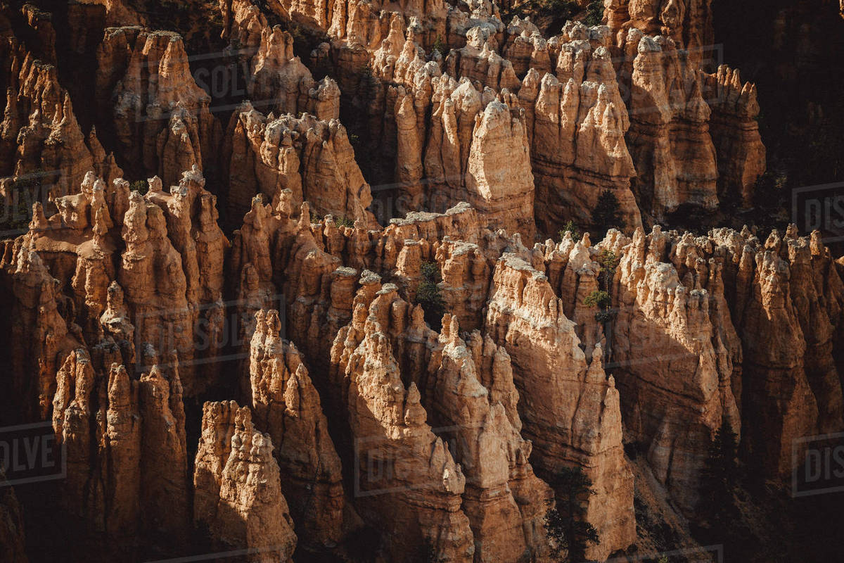 Detail of Bryce Canyon from Bryce Point at sunset Royalty-free stock photo