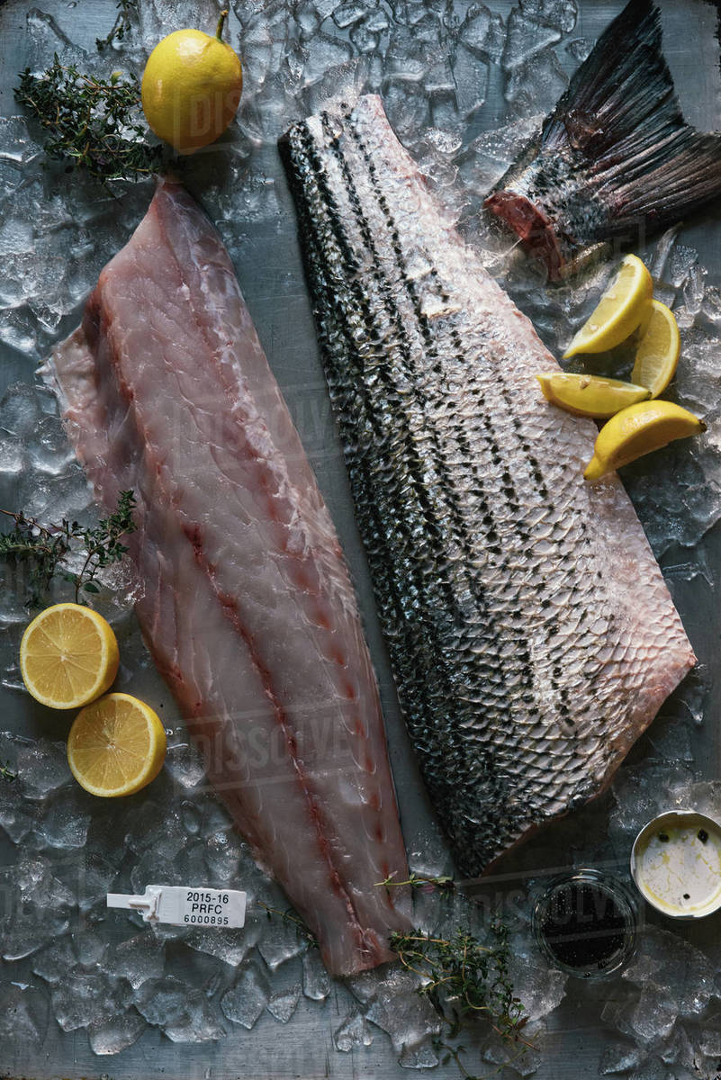 Filet of whole fish on ice in a restaurant kitchen from overhead Royalty-free stock photo