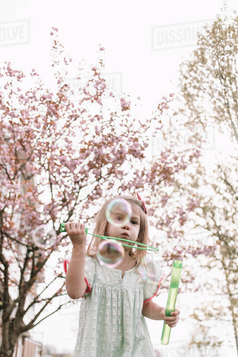 Blowing bubbles in the cherry blossoms Royalty-free stock photo