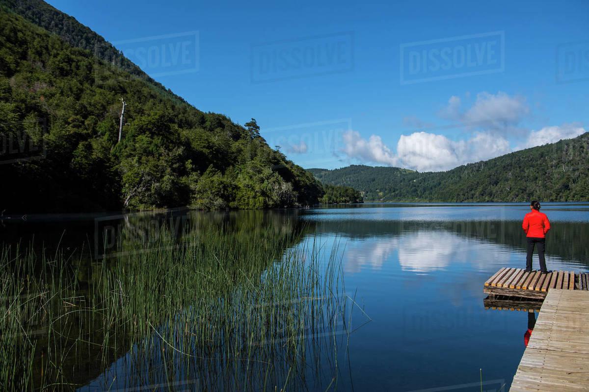 Woman admiring still lake at the Chilean Lake District Royalty-free stock photo
