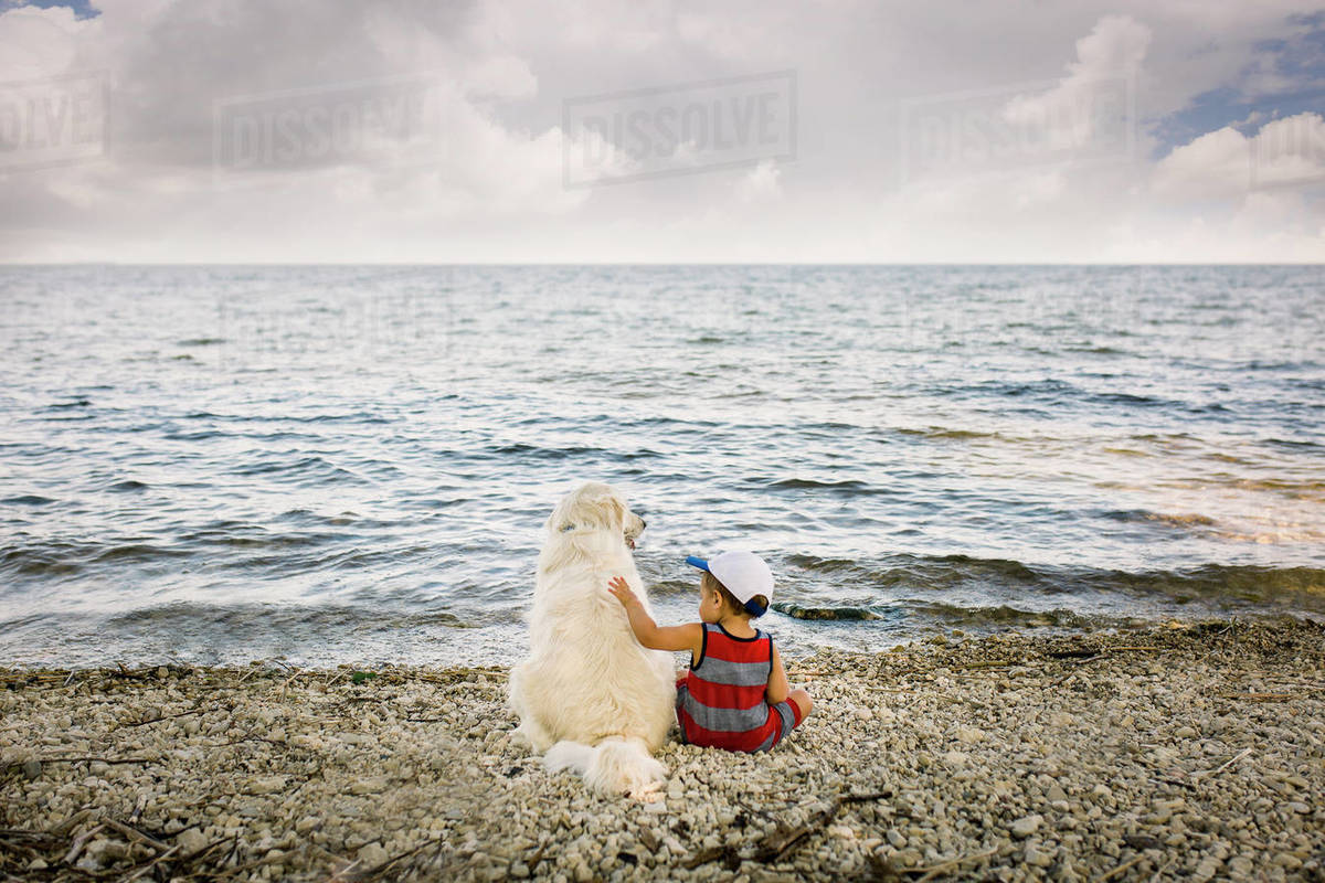 Toddler boy sitting with golden retriever dog on beach looking at lake Royalty-free stock photo