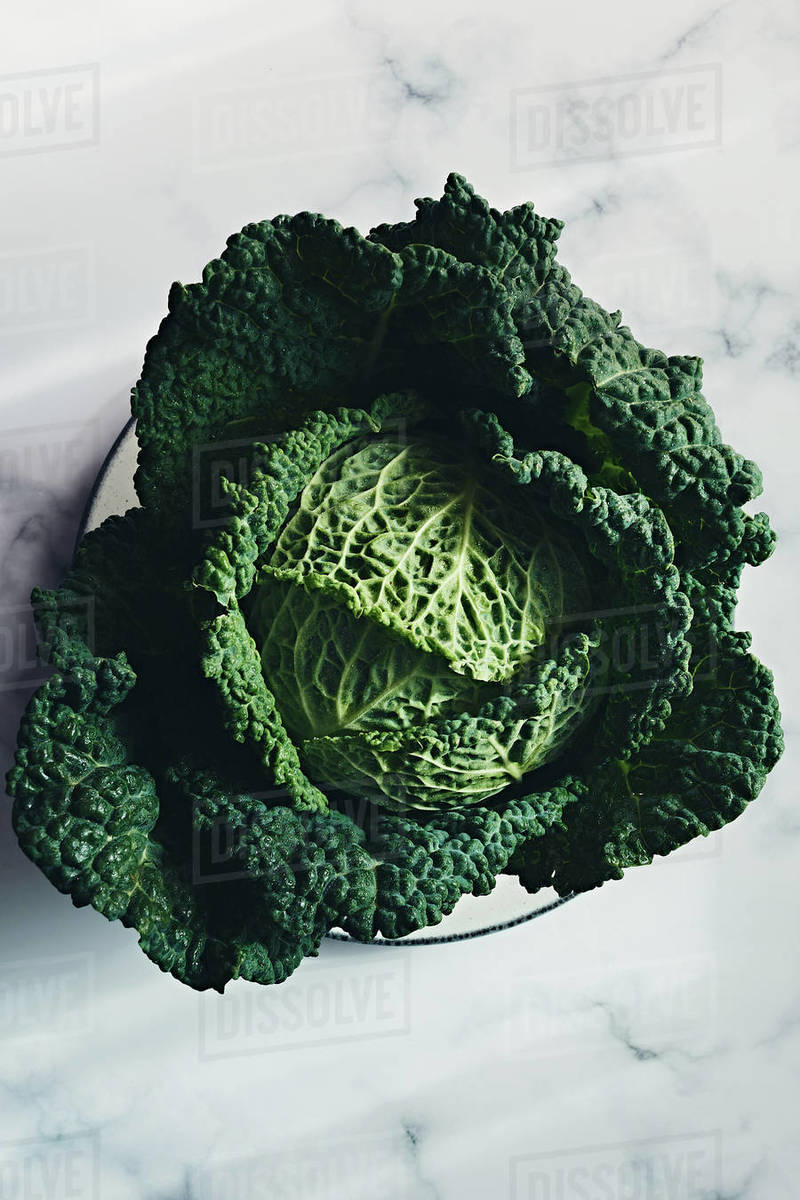 Still life of green cabbage Royalty-free stock photo