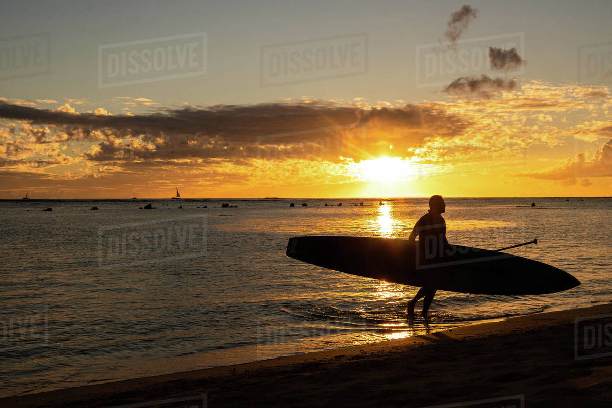 Paddle Boarding holds board and walks to beach at sunset in hawaii Royalty-free stock photo