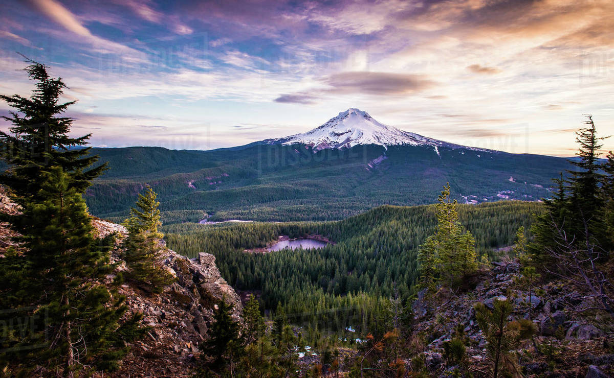 Mt. Hood in Oregon at Sunrise with trees and lake Royalty-free stock photo