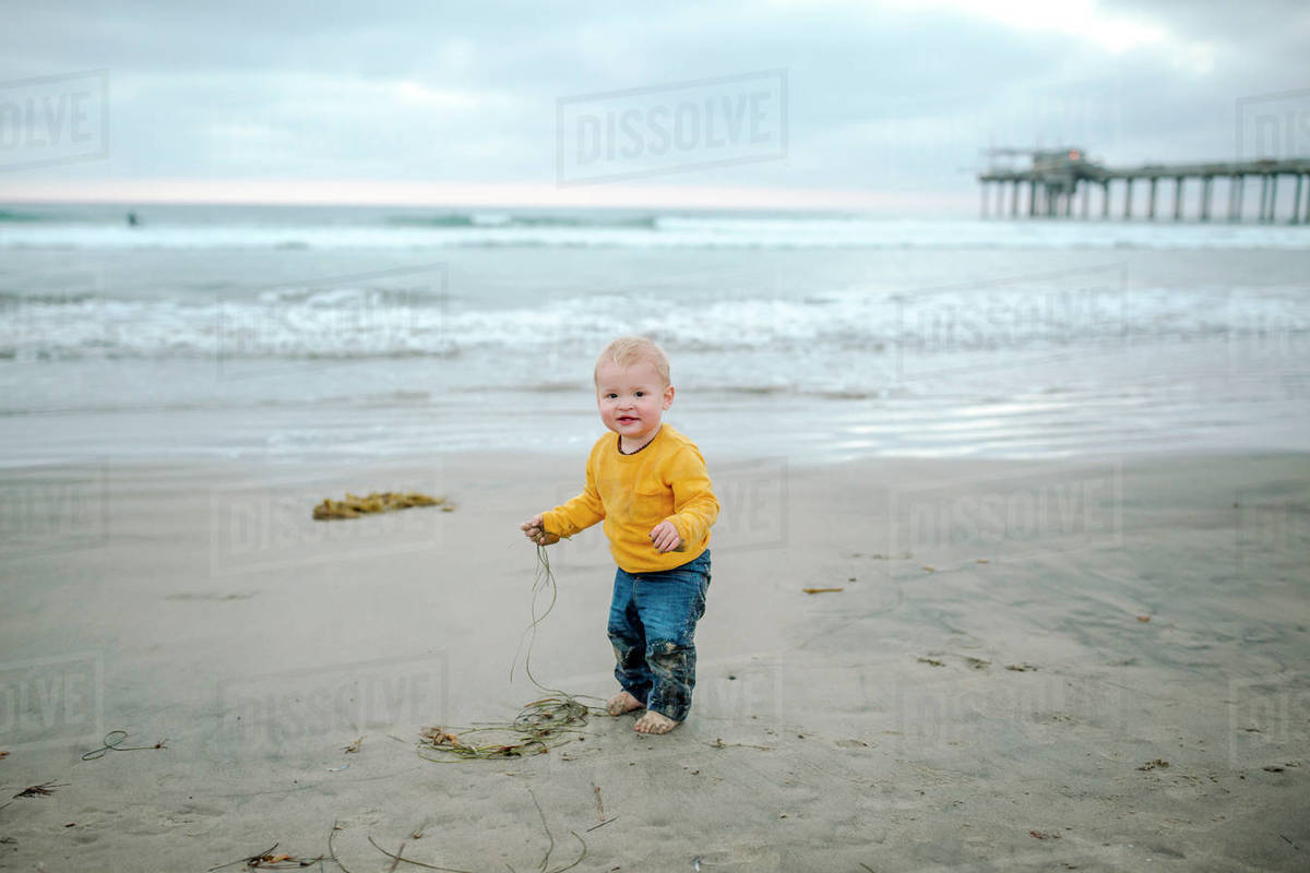 Toddler in yellow shirt and jeans holding seaweed on beach near pier Royalty-free stock photo