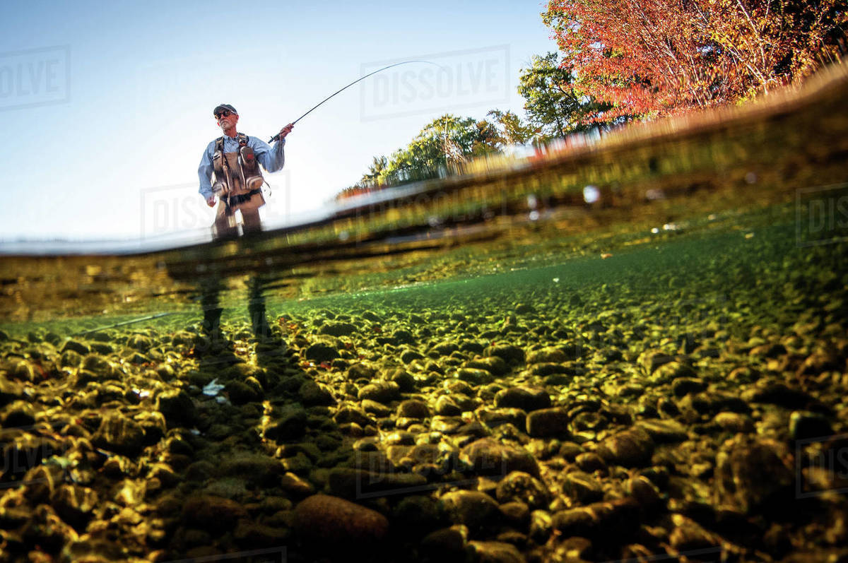 Over-under shot of fly-fisherman casting with sun behind him Royalty-free stock photo