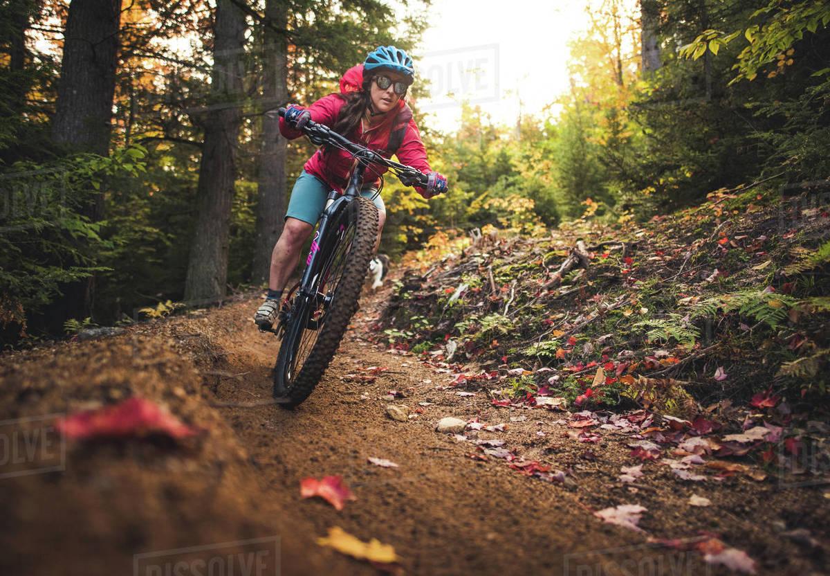 Female mountain-biking downhill during foliage season Royalty-free stock photo