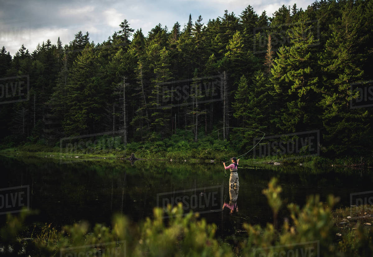 Woman angler fly-fishing in NH backcountry lake during afternoon light Royalty-free stock photo