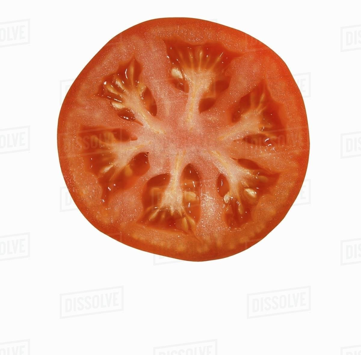 tomato slice on white background stock photo dissolve