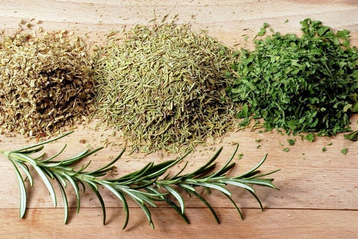 Still life with dried herbs - Stock Photo - Dissolve