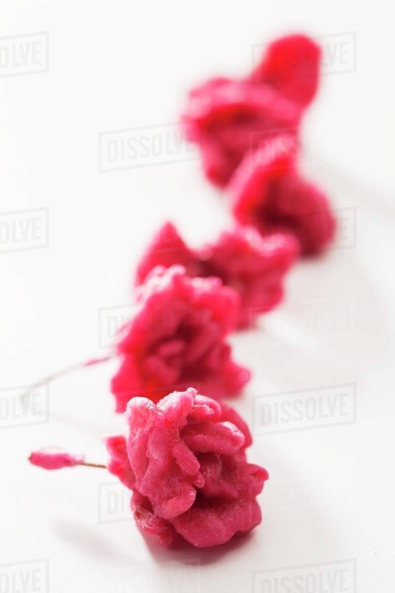 Pink Sugar Flowers Stock Photo Dissolve