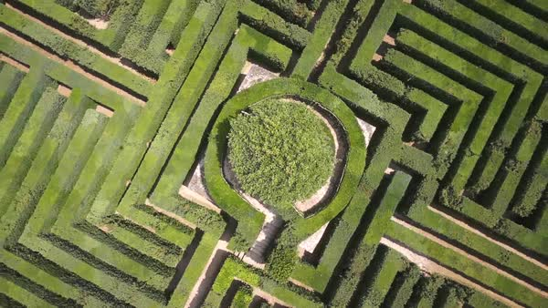 Aerial shot of a hedge maze Royalty-free stock video