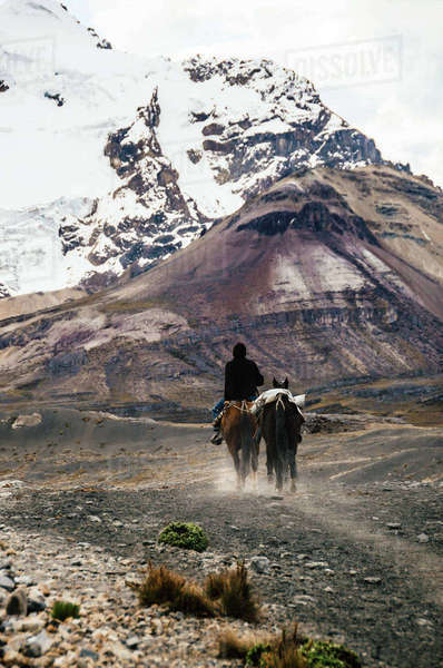 Man riding with two horses through the Cordillera Blanca, part of the Andes mountain range Rights-managed stock photo