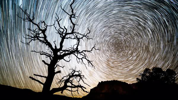 Timelapse of a star trail as it forms in the Utah desert of Capitol Reef. Royalty-free stock video