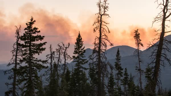 Smoke moving over mountain tops from wildfire viewing through trees in a timelapse. Royalty-free stock video