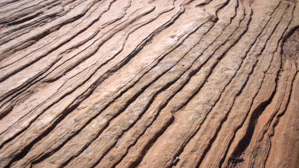 Panning view of sandstone texture in Zion National Park Royalty-free stock video