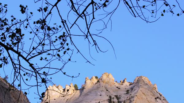 View of cliff top in Zion National Park through branches Royalty-free stock video