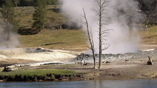 Steam rising from hot pots in Yellowstone National Park Royalty-free stock video