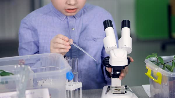 The boy preparing for the science experiment Royalty-free stock video