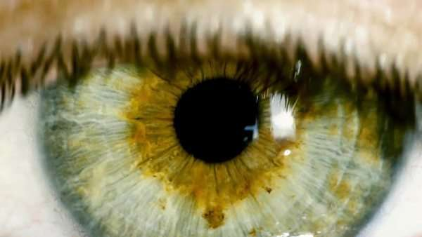 Extreme close-up shot of the wide open human eye of a female. Big zoom in, eye blinking. Royalty-free stock video