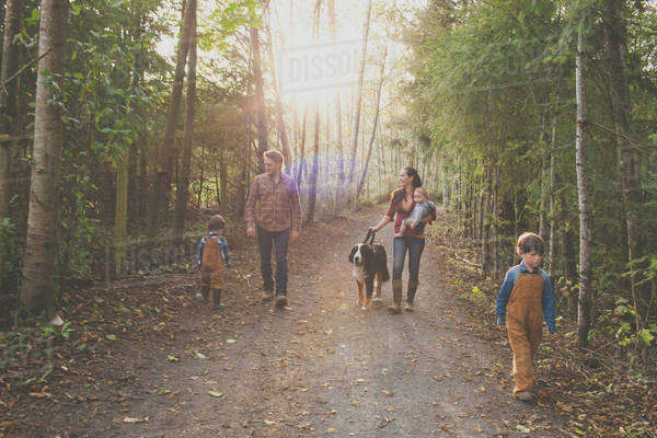 A family of five with a dog enjoy a morning walk on a gravel path at a local park. Royalty-free stock photo
