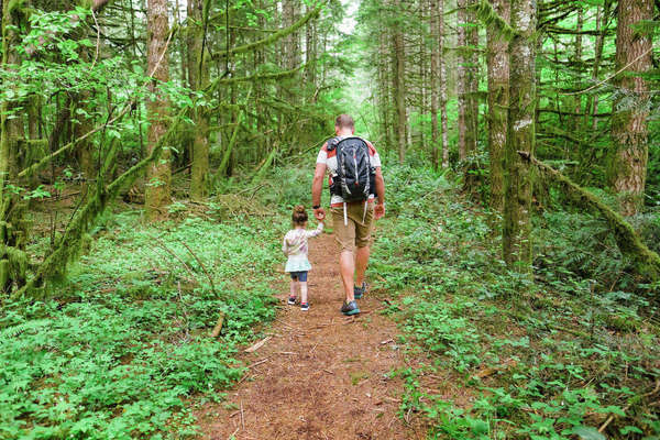 Young Child With Her Dad Hiking Through The Forest On A Trail In Oregon Royalty-free stock photo