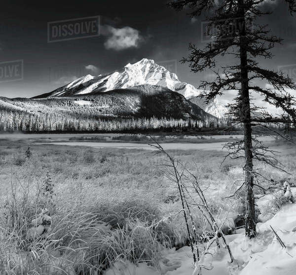 Black and white shot of Vermillion Lakes and the Cascade mountain range in Banff National Park, Alberta, Canada. Royalty-free stock photo