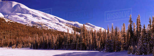 Panoramic shot of Observation Peak in Banff National Park, Alberta, Canada. Royalty-free stock photo
