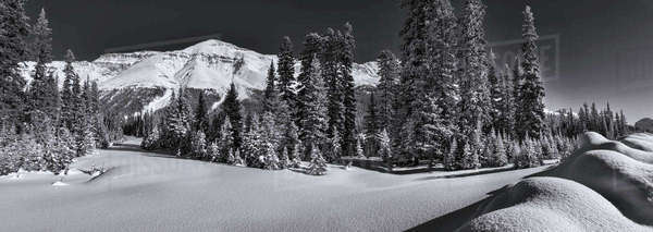 Black and white shot of Observation Peak Banff National Park, Alberta, Canada. Royalty-free stock photo