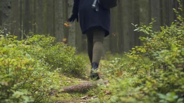 Hand-held shot of a woman walking in a forest Royalty-free stock video