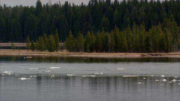 Medium shot of ice flow on a river in Yellowstone National Park Rights-managed stock video