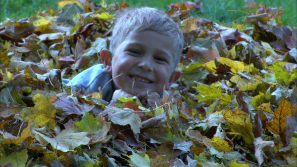 Panning shot view of a boy lying in the leaves Rights-managed stock video
