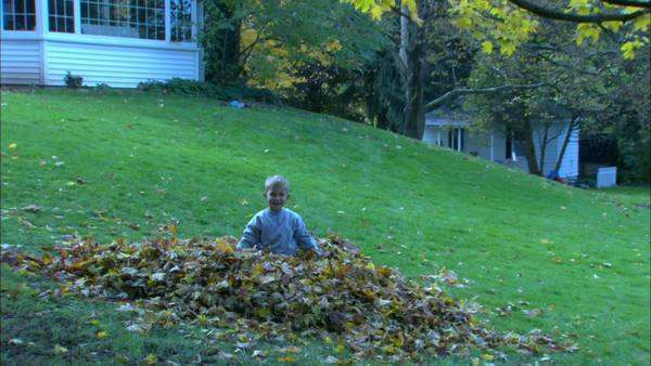 Zooming in shot view of a boy playing in the leaves Rights-managed stock video
