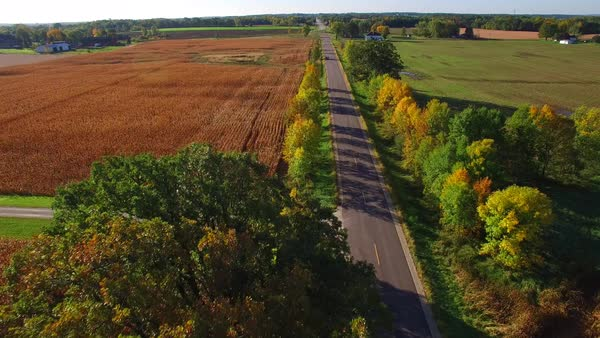 Drone returns to photographer on autumn country road.  Royalty-free stock video