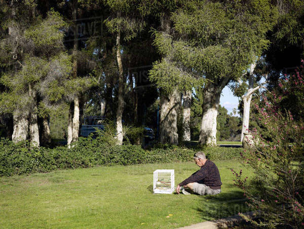 Old man thinking alone in park with birdcage and trees. USA. 2009 Rights-managed stock photo